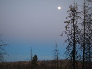 Beautiful moon shines over the landscape