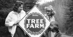 Montesano Tree Farm