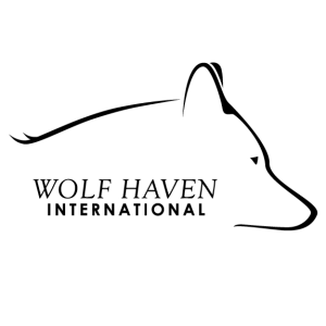 Wolf Haven International