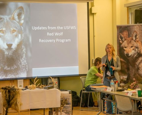 Becky Harrison, assistant recovery coordinator for the red wolf, provides an update on the status of the wild population.