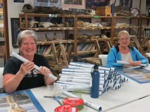 Volunteers Becky & Kaye prepare wolf posters for education programs.
