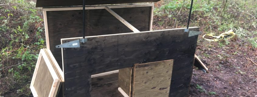 Shelter box (opened) for new wolf enclosure.