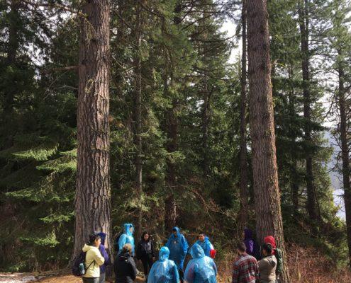 Ecology hike